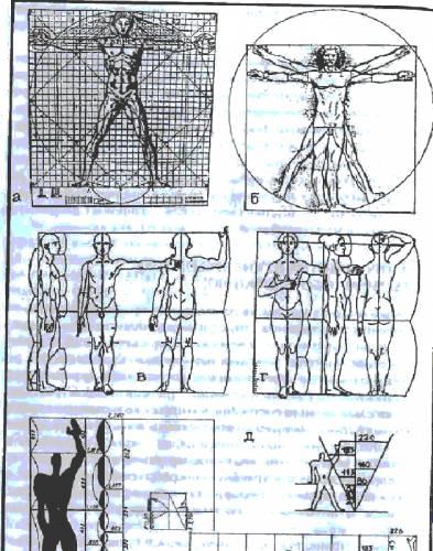 -измерение линейных размеров тела: